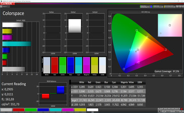 CalMAN: Colour Space – sRGB target colour space, standard white balance