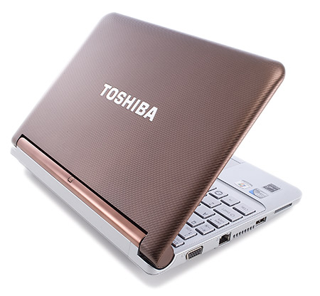 Toshiba nb305 xp